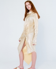 Faina Golden Dress loookbook 1